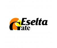 Eselta-L-Gate, лицензия на дополнительный контроллер