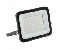 LPDO601-100-65-K02, прожектор светодиодный СДО 06-100