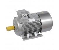 DRV200-L2-045-0-3010, электродвигатель асинхронный трехфазный