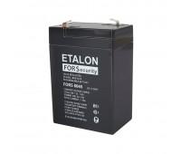 Etalon FORS 6045, батарея аккумуляторная